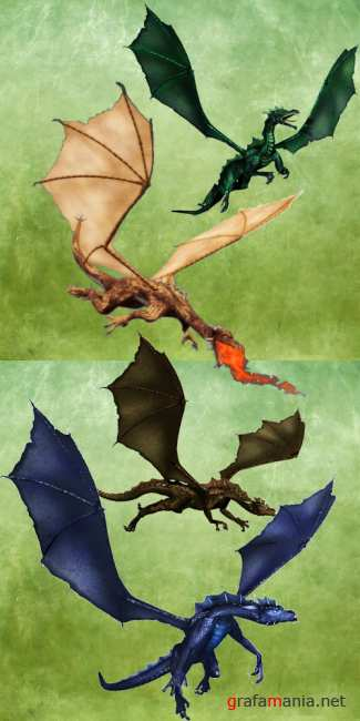 Painted Dragons PSD