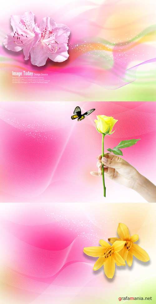 Beautiful spring flowers psd
