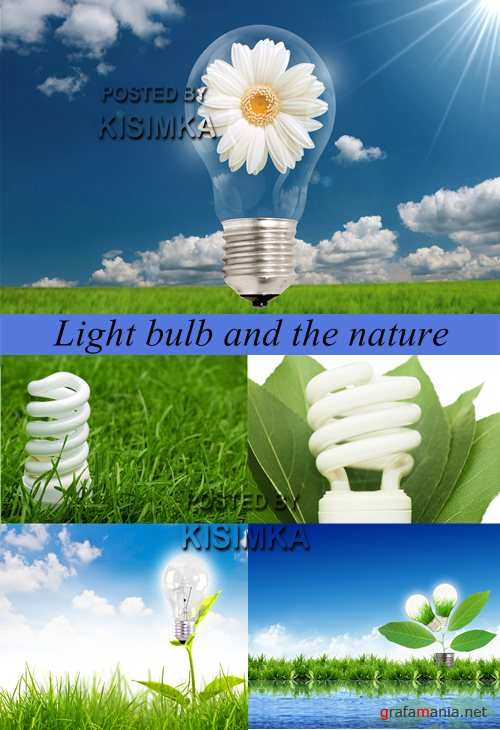 Stock Photo: Light bulb and the nature