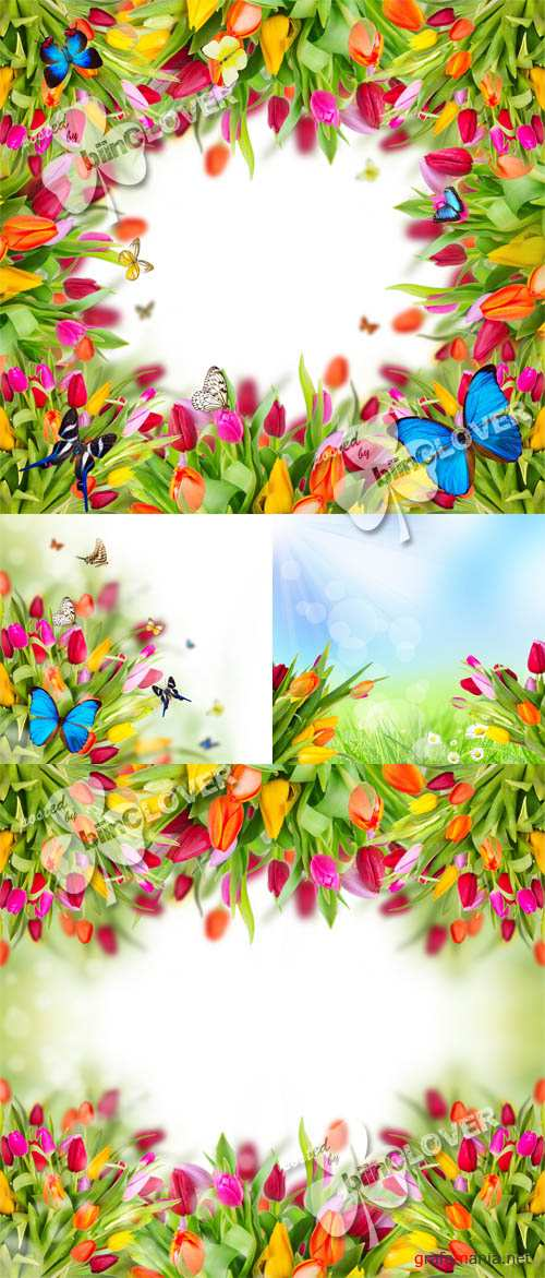 Spring flowers with butterflies 0120