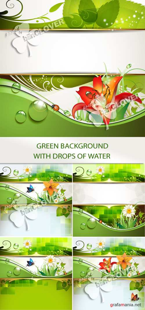 Green background with drops of water 0127