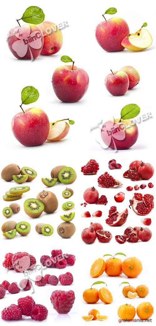 Fruit collection 0137