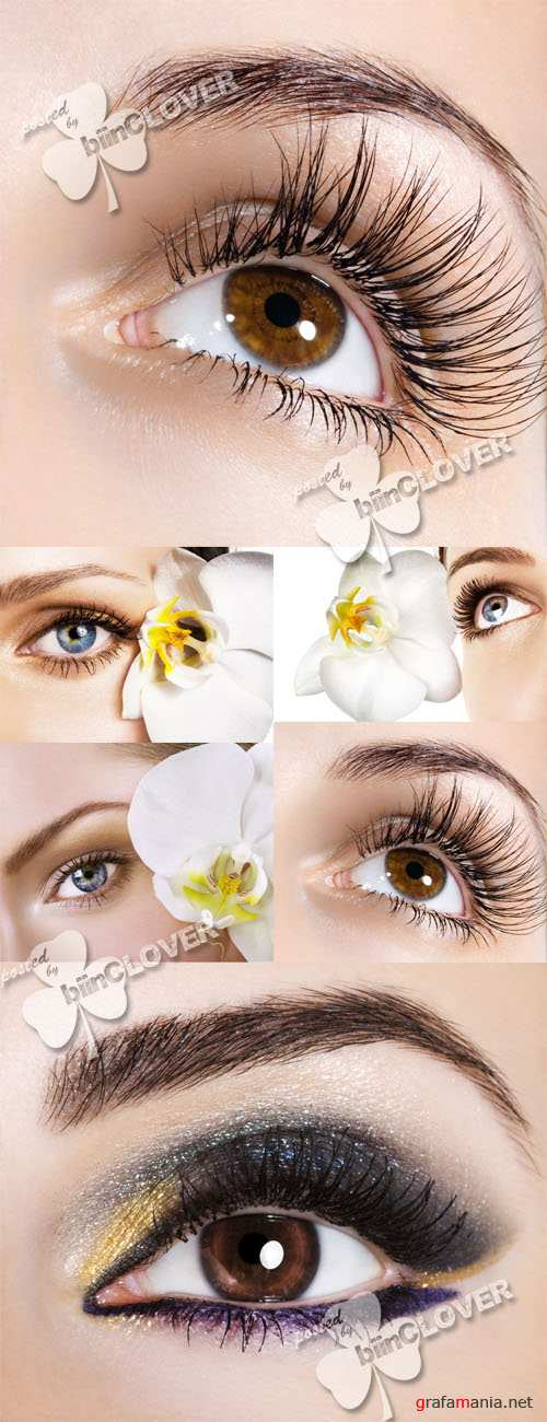 Woman eye and flower 0145