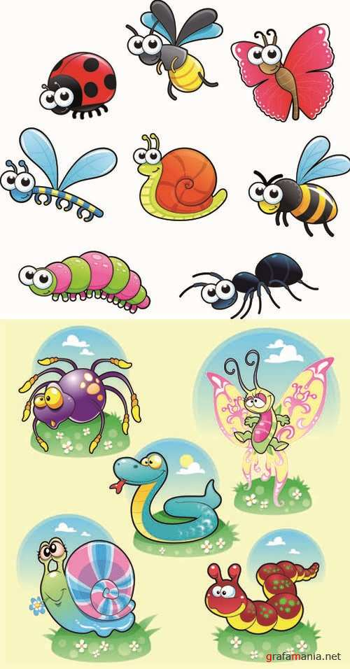 Insects - Funny and Unusual Animals #3
