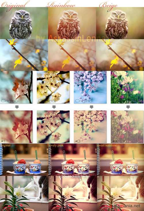 Photoshop Actions 2012 pack 620
