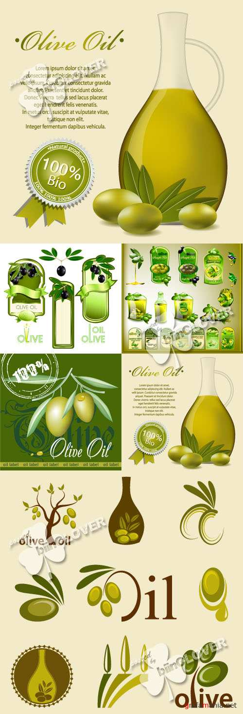 Olive oil label pattern and icons 0246