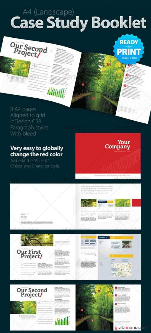 GraphicRiver 8 Pages Case Study Booklet