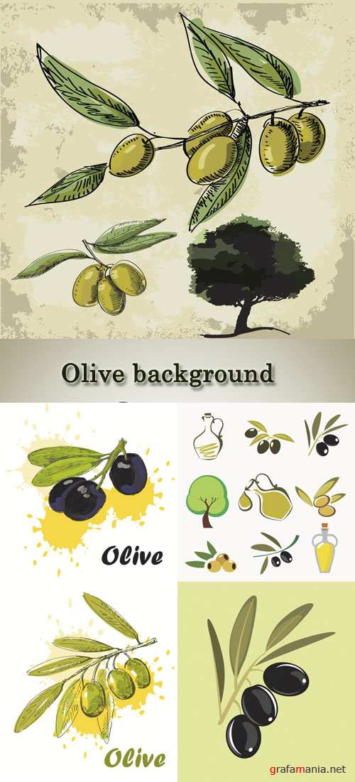 Stock: Olives and oil, backgrounds