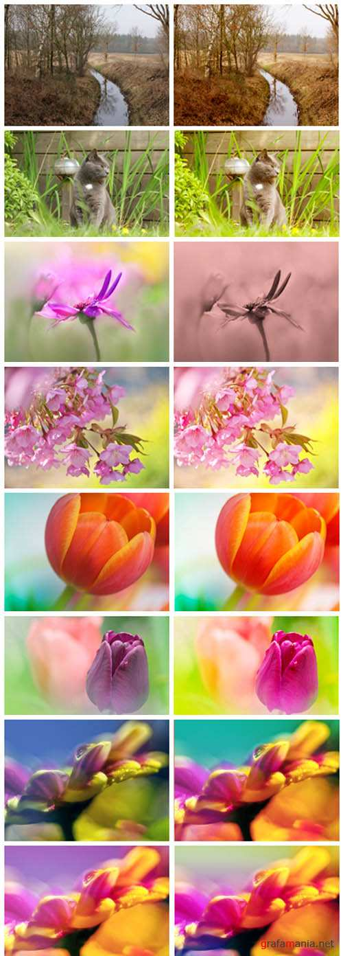 Photoshop Actions 2012 pack 761