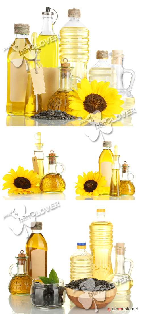 Olive and sunflower oil 0276