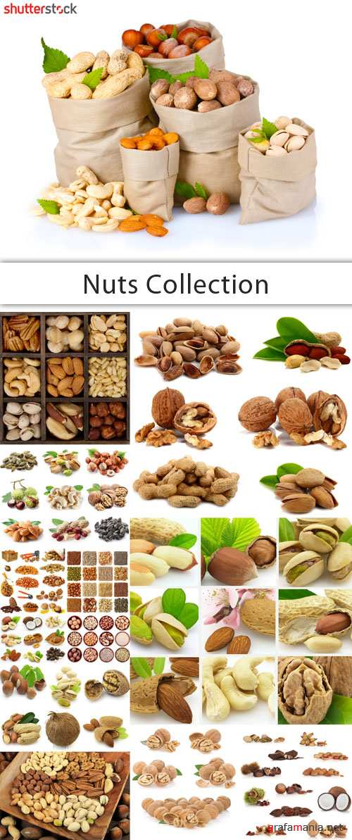 Nuts Collection - 25 HQ JPEG Stock Photo