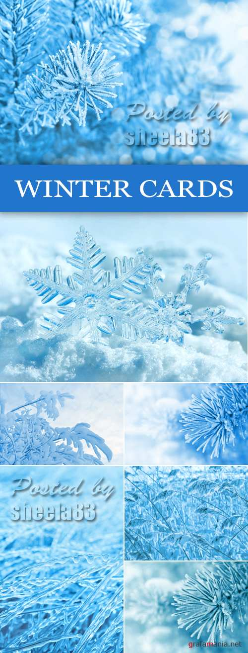 Stock Photo - Snowy Winter Backgrounds