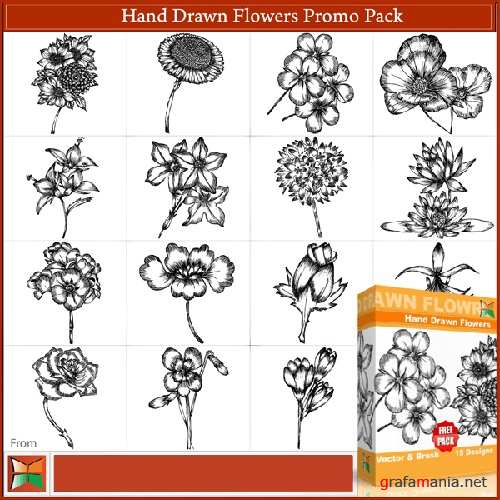 Hand Drawn Flowers Free Vector & Brushes Pack