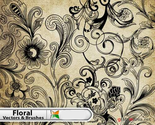Decorative Floral Vector Illustrator and Brushes Pack