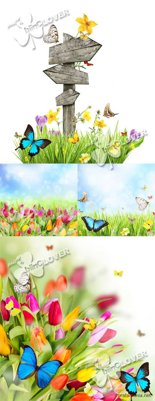 Floral meadow with butterflies 0364