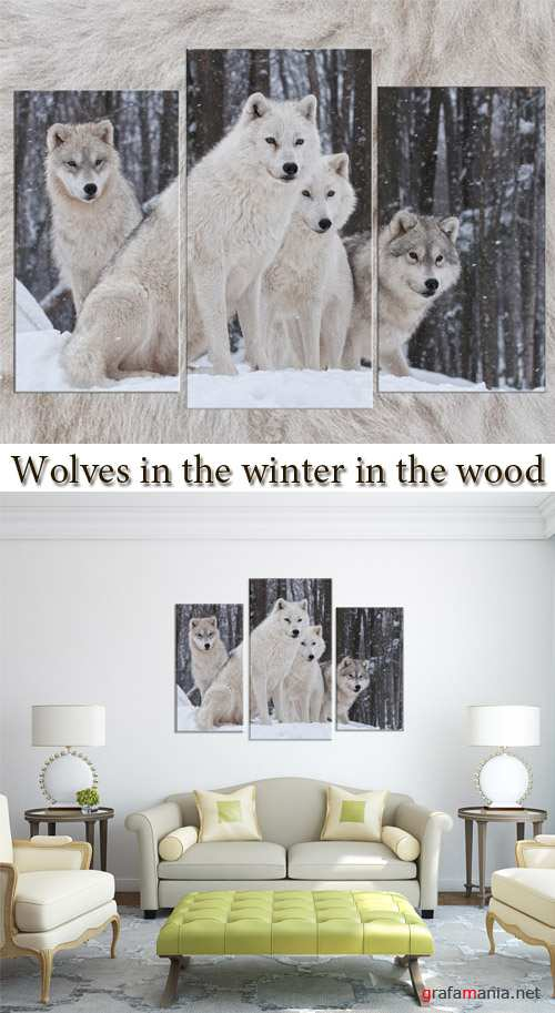 Triptyches, Fourplex - Wolves in the winter in the wood