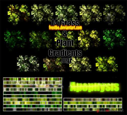 Apophysis Grass and Plant Gradient Pack