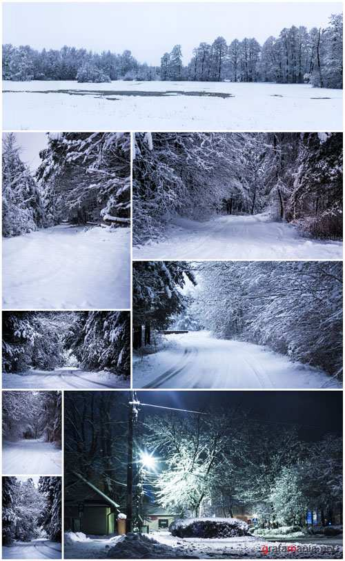 17 Winter Forest and Landscape Stock Pack