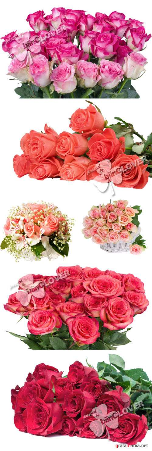 Bouquet of roses 0402