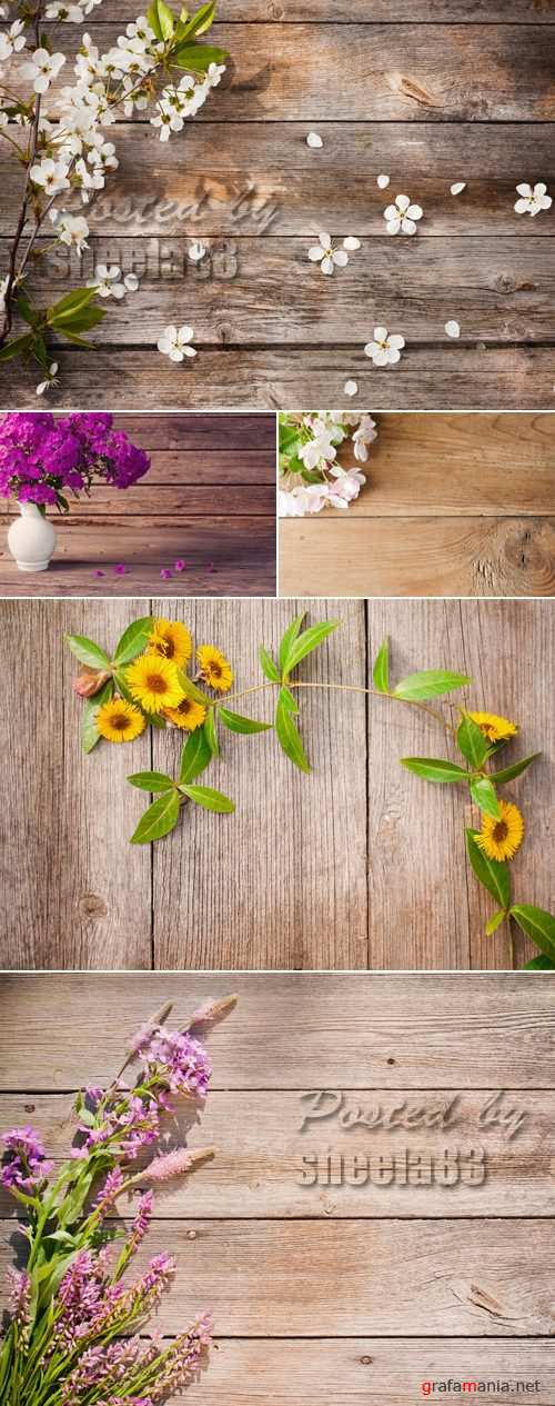 Stock Photo - Flowers on Wooden Background 2