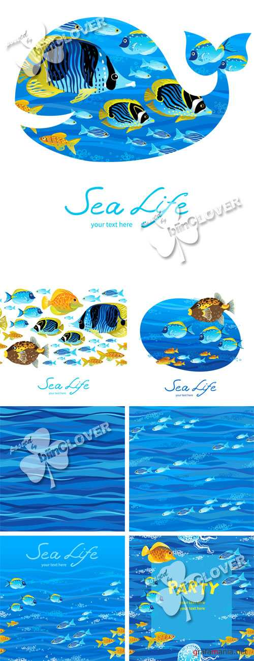 Background with tropical fishes 0444