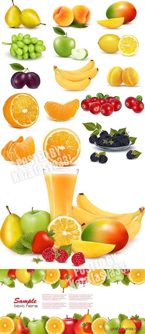 Fruits vector 5