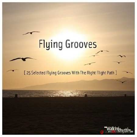 Flying Grooves - 25 Selected Flying Grooves With the Right Flight Path (2013)
