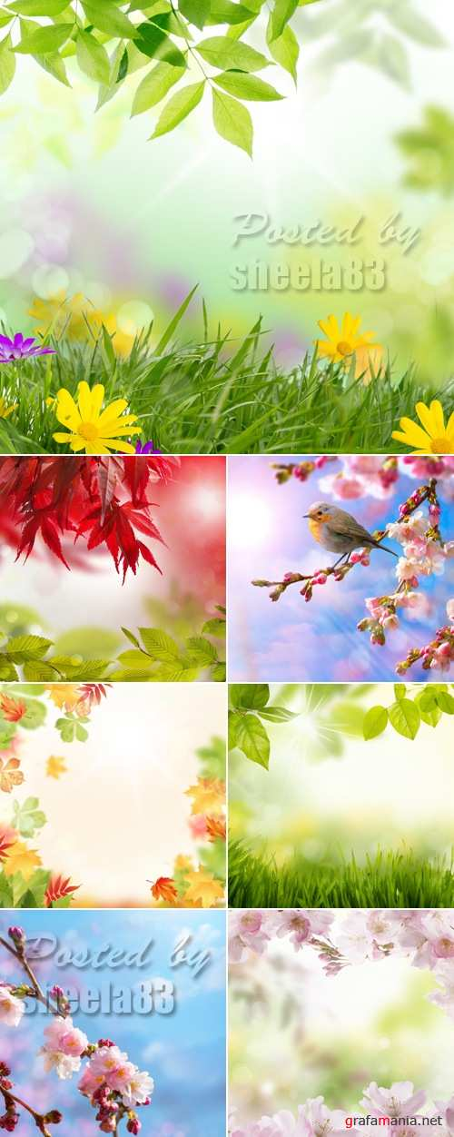 Stock Photo - Natural Backgrounds 3