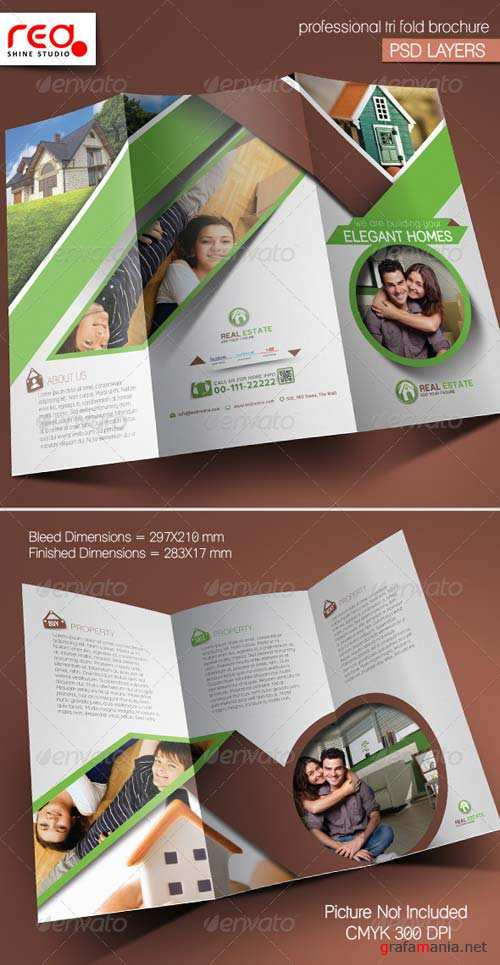 GraphicRiver Real Estate Trifold Brochure Template