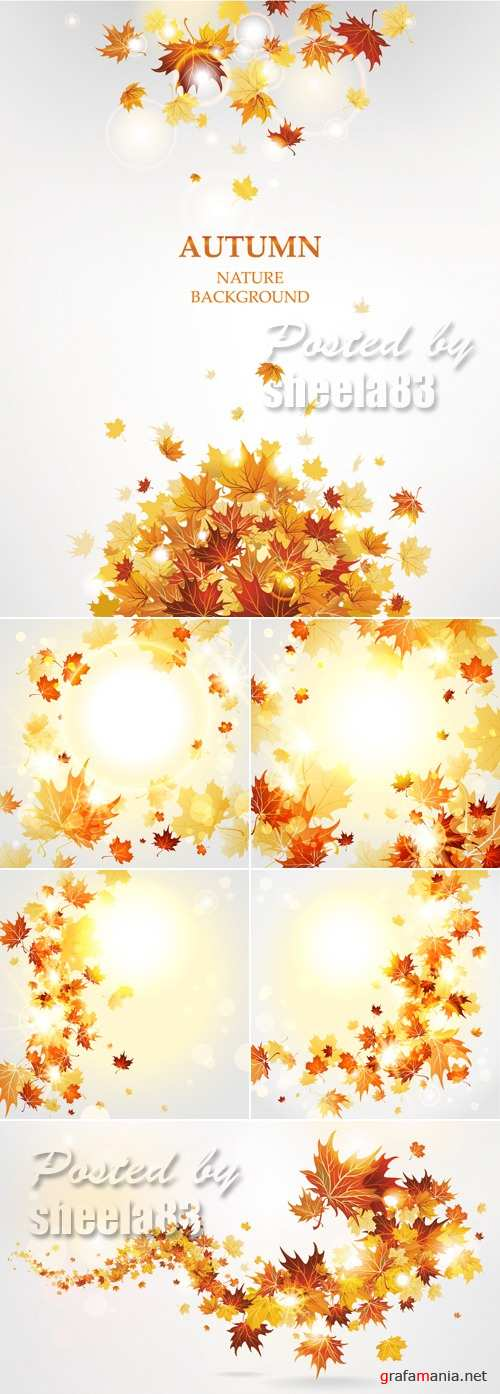 Autumn Leaves Backgrounds Vector 2