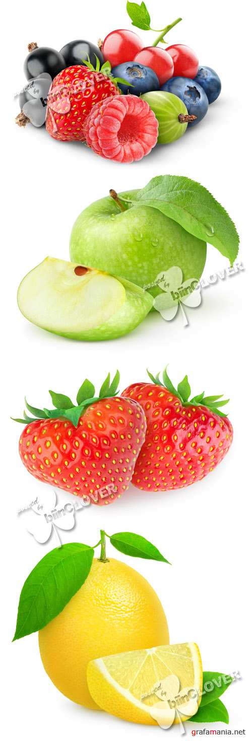 Fruits, citrus and berries 0491