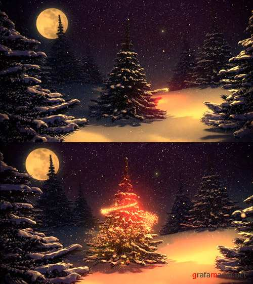 iStock Video Footage - Christmas Tree Decorated By Polar Star 2