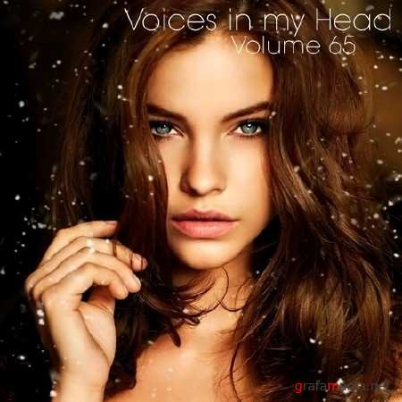 Voices in my Head Volume 65 (2013)