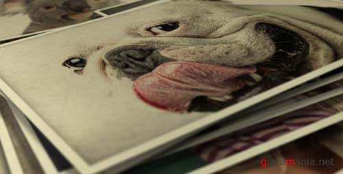 Photo Gallery Smile To Life - After Effects Project (Videohive)