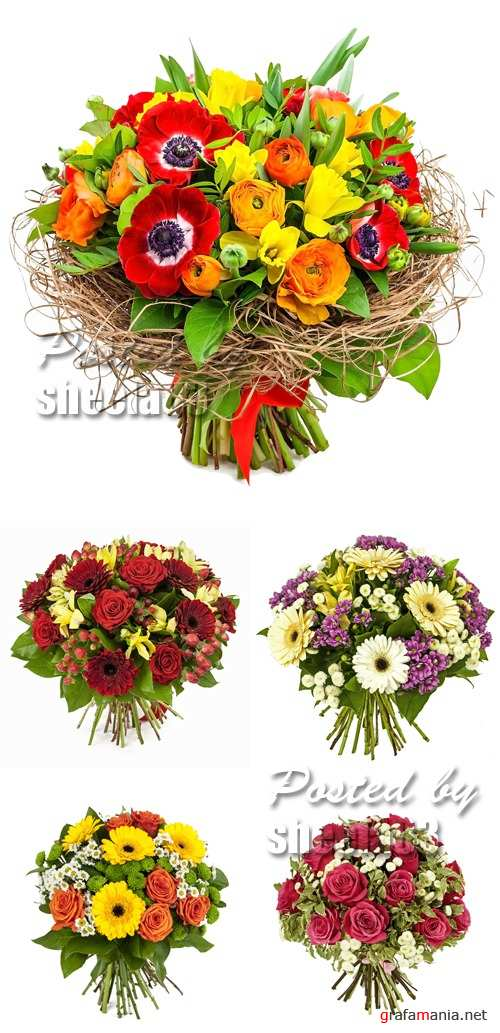 Stock Photo - Bouquet of Flowers 2