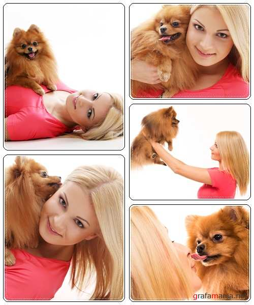 Girl with lovely dog - stock photo