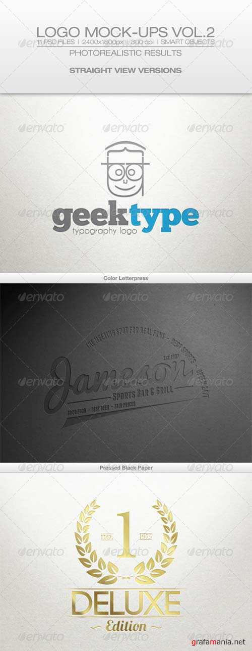 GraphicRiver Logo Mock-ups Vol.2 Straight View