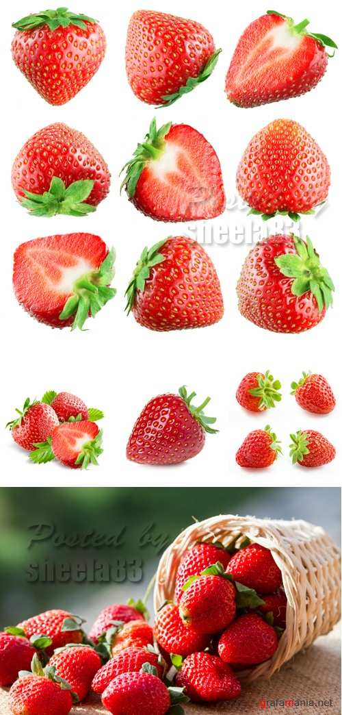Stock Photo - Strawberries