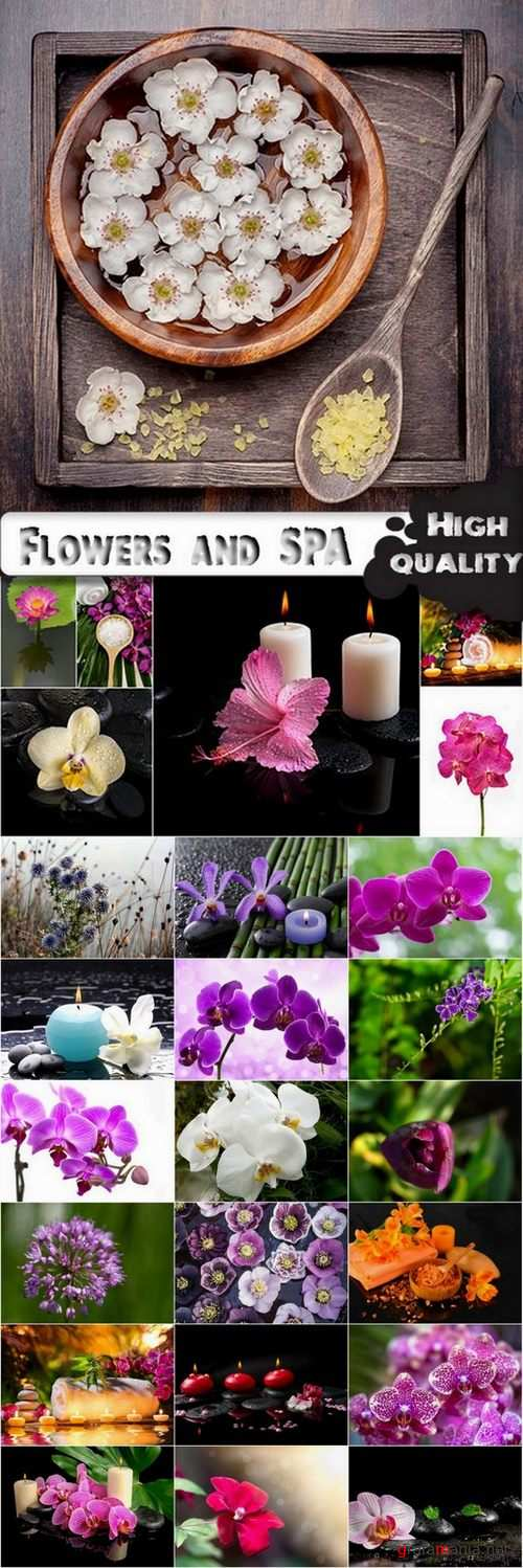 Flowers and SPA stock images - 25 HQ Jpg