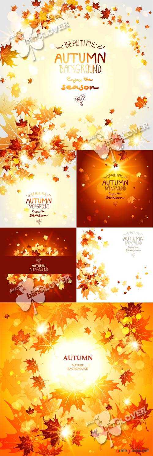 Autumn cards with yellow and orange maple leaves 0591