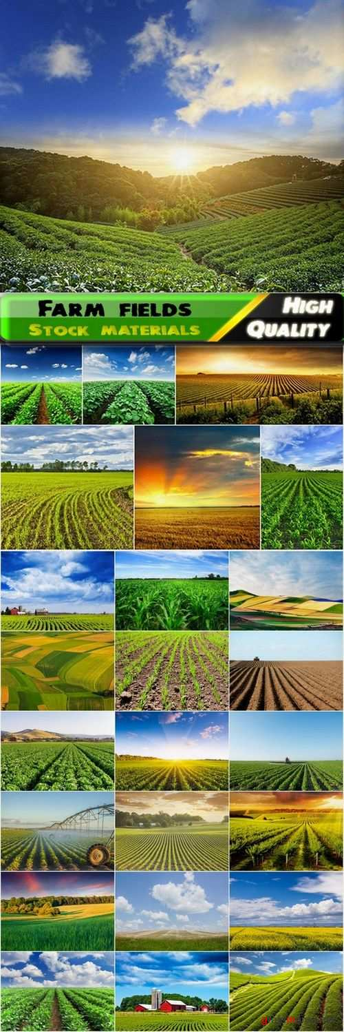 Farm fields and beautiful landscapes Stock images - 25 HQ Jpg