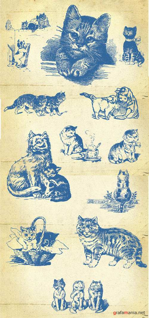 20 Vector Hand Drawn Cats and Kittens