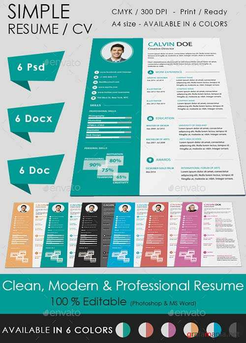 GraphicRiver Simple Resume 9008743