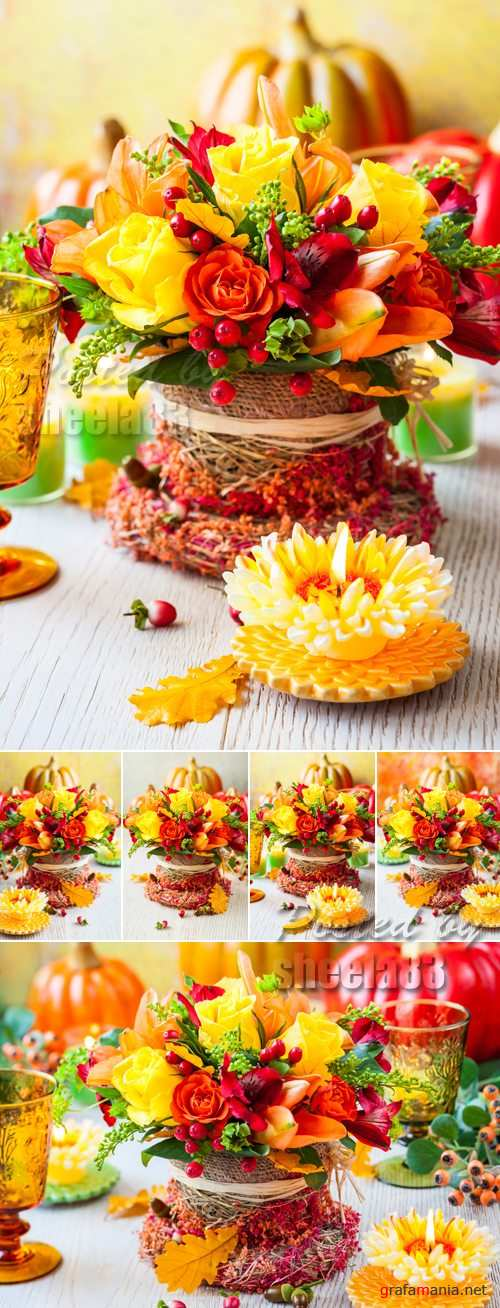 Stock Photo - Autumn Flowers