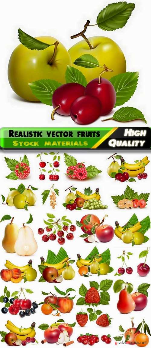 Realistic vector fruits from stock - 25 Eps