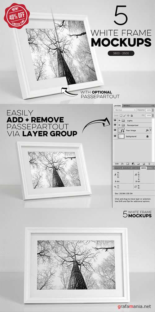 CreativeMarket - Bundle of 5 White Frame Mockups