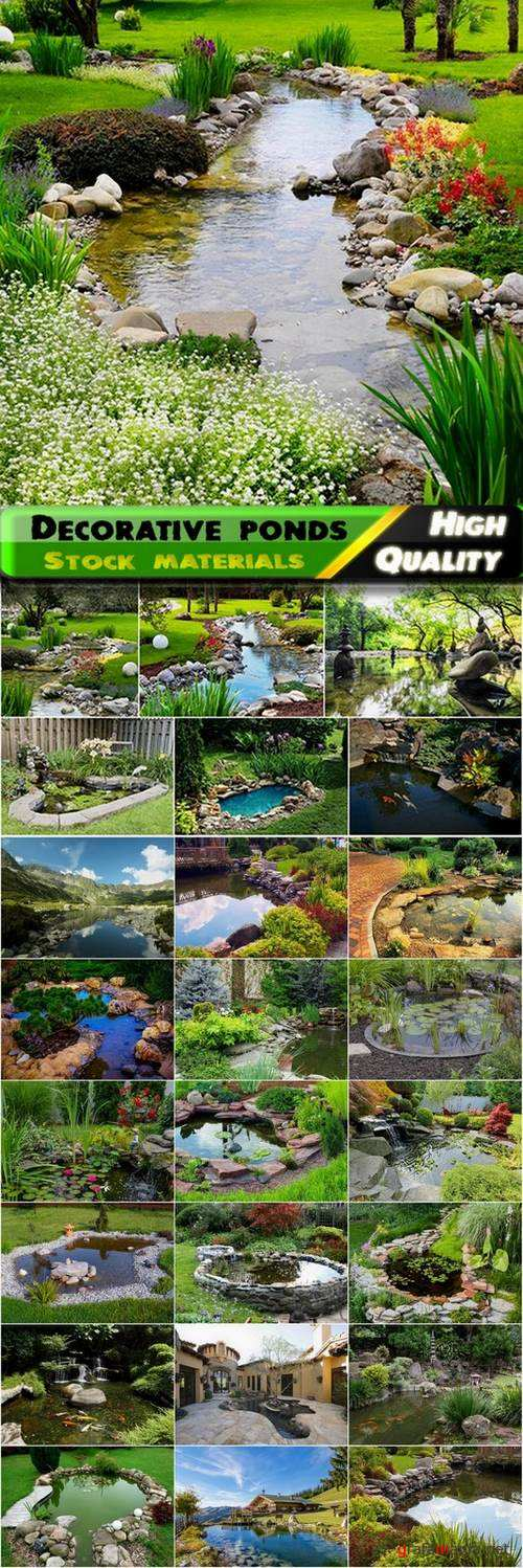 Decorative ponds in the garden and in nature - 25 HQ Jpg