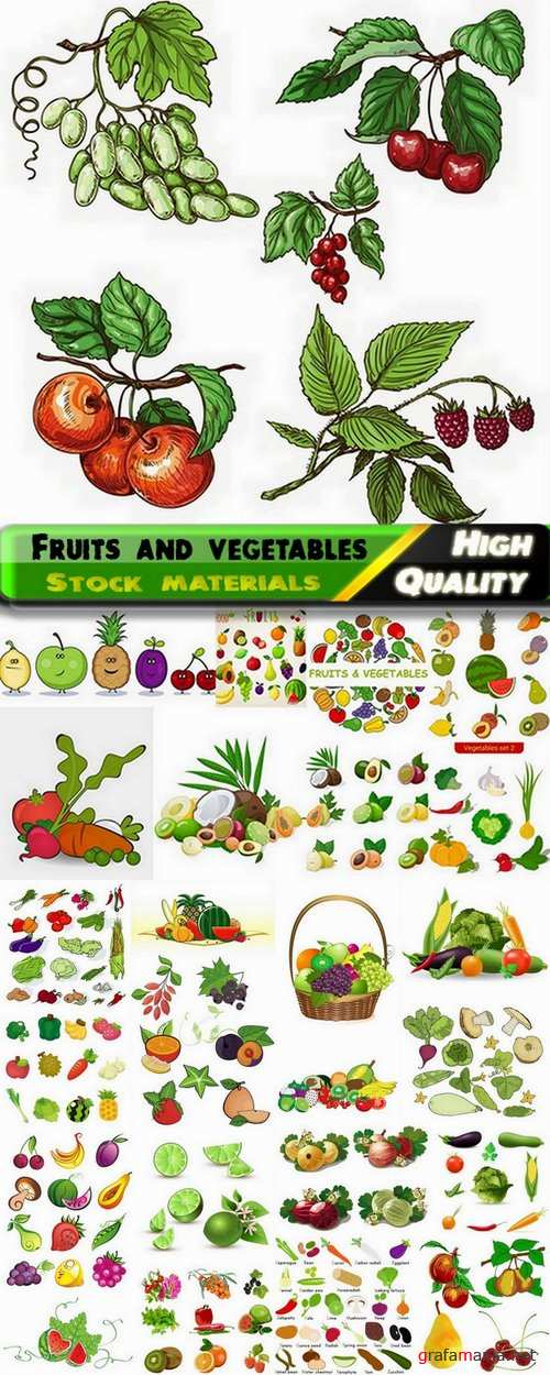 Vector fruits and vegetables from stock - 25 Eps