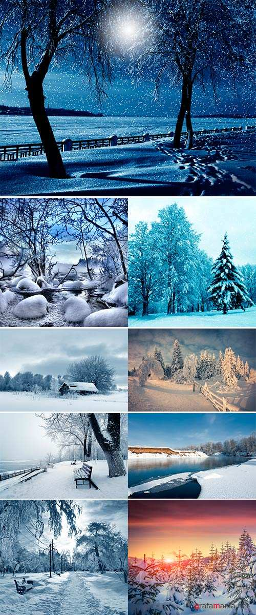 Stock Photos Winter nature, night, alley and snowstorm