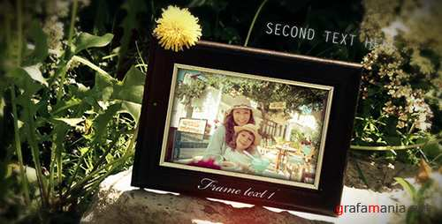 Nature Photo Gallery 7758218 - Project for After Effects (Videohive)